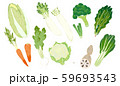 冬野菜のイラスト 59693543