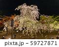平安神宮 - 春のライトアップ 59727871
