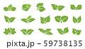 Green leaf set 59738135