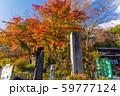 高尾山 秋 清滝駅前 59777124