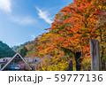 高尾山 秋 清滝駅前 59777136