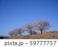 青空と桜 59777757