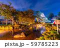 兼六園 雪吊り ライトアップ 秋 【石川県】 59785223