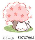 花見白ネコ 59787908