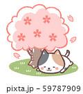 花見三毛ネコ 59787909