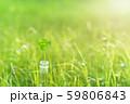 逆光で鮮やかな草原で瓶に一輪の幸運の四つ葉のクローバー 昼間 59806843