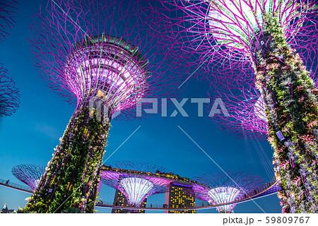 シンガポール ガーデン・バイ・ザ・ベイの夜景 イルミネーション ライトアップ 59809767