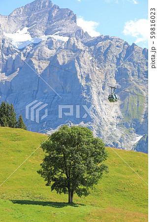 スイスの美しい風景 59816023