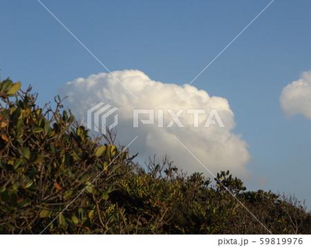 秋の検見川浜の白い雲と青い空 59819976