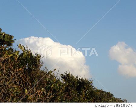 秋の検見川浜の白い雲と青い空 59819977