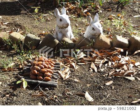 ウサギのオブジェにどんぐりの贈り物 59821002