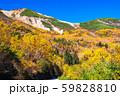 《長野県》紅葉の乗鞍岳・自然風景 59828810