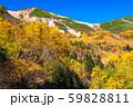《長野県》紅葉の乗鞍岳・自然風景 59828811