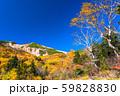 《長野県》紅葉の乗鞍岳・自然風景 59828830