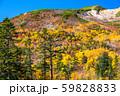 《長野県》紅葉の乗鞍岳・自然風景 59828833