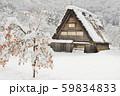 【世界遺産】[岐阜県]白川郷の冬景色。雪の降り積もった柿の木と共に。 59834833