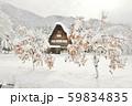 【世界遺産】[岐阜県]白川郷の冬景色。雪の降り積もった柿の木と共に。 59834835
