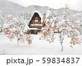 【世界遺産】[岐阜県]白川郷の冬景色。雪の降り積もった柿の木と共に。 59834837