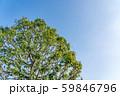 自然イメージ 59846796