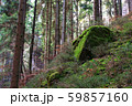 Mossy stone and rocks in forest, Bohemian 59857160