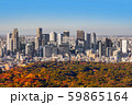 東京新宿の風景Scenery of Japan in Tokyo Shinjuku  59865164
