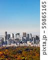 東京新宿の風景Scenery of Japan in Tokyo Shinjuku  59865165