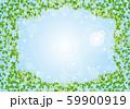 木:木 枝 自然 緑 葉 新緑 新芽 初夏 夏 春 エコ グリーン 59900919