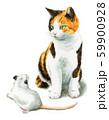水彩で描いた三毛猫と白ねずみ 59900928