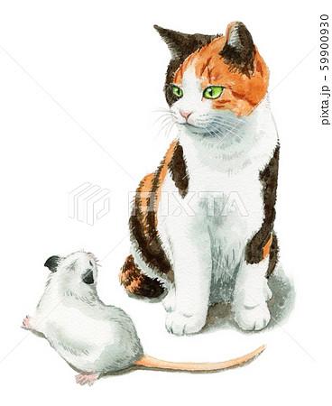 水彩で描いた三毛猫と白ねずみ 59900930