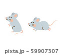 ネズミ 59907307