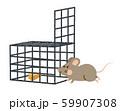 ネズミ 捕獲 59907308