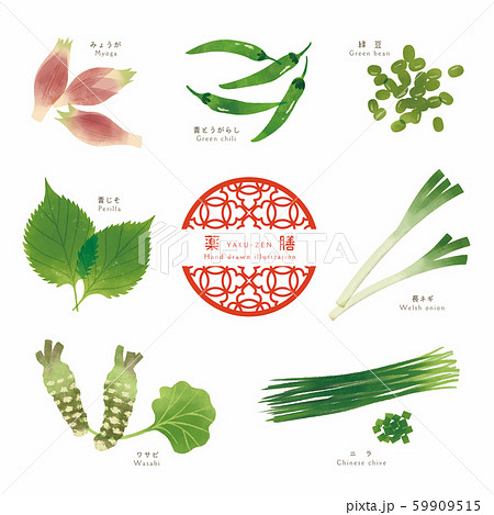 薬膳 / 漢方食材 / ほっこりイラスト-4 59909515