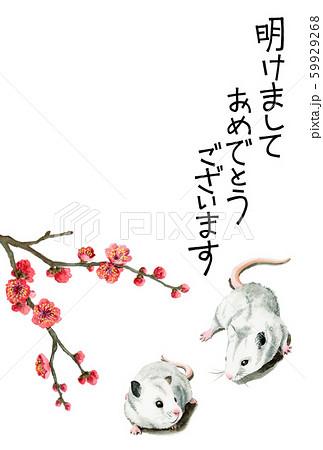 水彩で描いたねずみイラストの年賀状 59929268