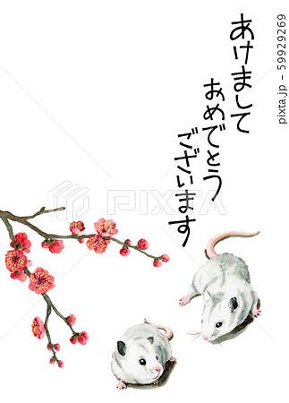 水彩で描いたねずみイラストの年賀状 59929269