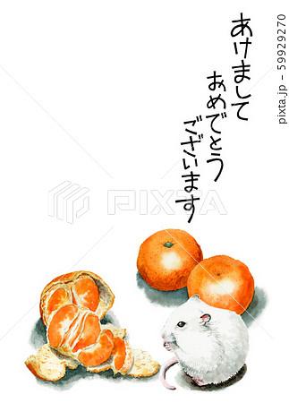 水彩で描いたねずみイラストの年賀状 59929270