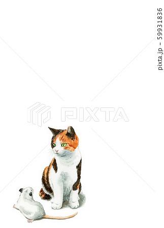 水彩で描いた三毛猫とねずみのイラストの年賀状 59931836