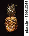 pineapple on the black background 59938366