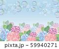 紫陽花:紫陽花 あじさい 花 カラフル 花びら 6月 梅雨 あじさい寺 しゃぼん玉 59940271