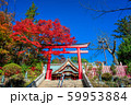 東京 高尾山薬王院の紅葉 59953884