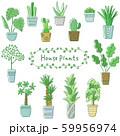 観葉植物のセット 59956974
