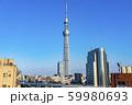 【東京都】浅草から見たスカイツリー 夕景 59980693