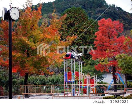 神田公園の秋2 59986025