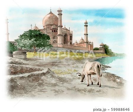 水彩風景画タージマハルと牛 59988646