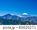 東京 高尾山 もみじ台からの富士山 60020271