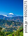 東京 高尾山 もみじ台からの富士山 60020275