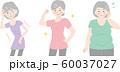 シニア女性 体型 太りすぎ やせすぎ 健康 60037027