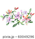 Alstroemeria and orchids bouquet botanical flowers. Watercolor background set. Isolated bouquets 60049296