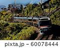 ローカル線を行くディーゼル特急イメージ 60078444