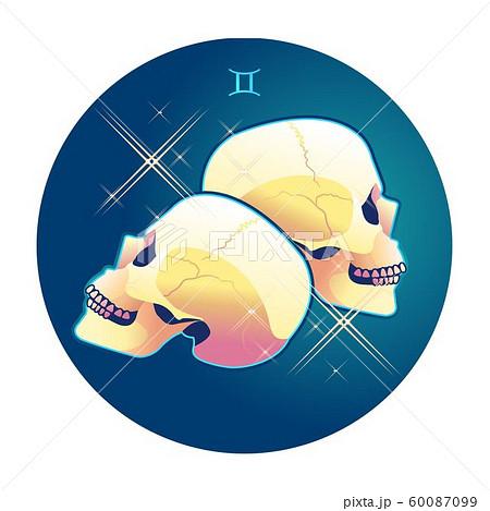 Gemini zodiac sign 60087099