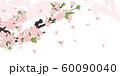 ソメイヨシノ 60090040